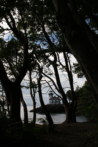 Lighthouse Through Trees - Lime Kiln Point State Park | by mamamusings