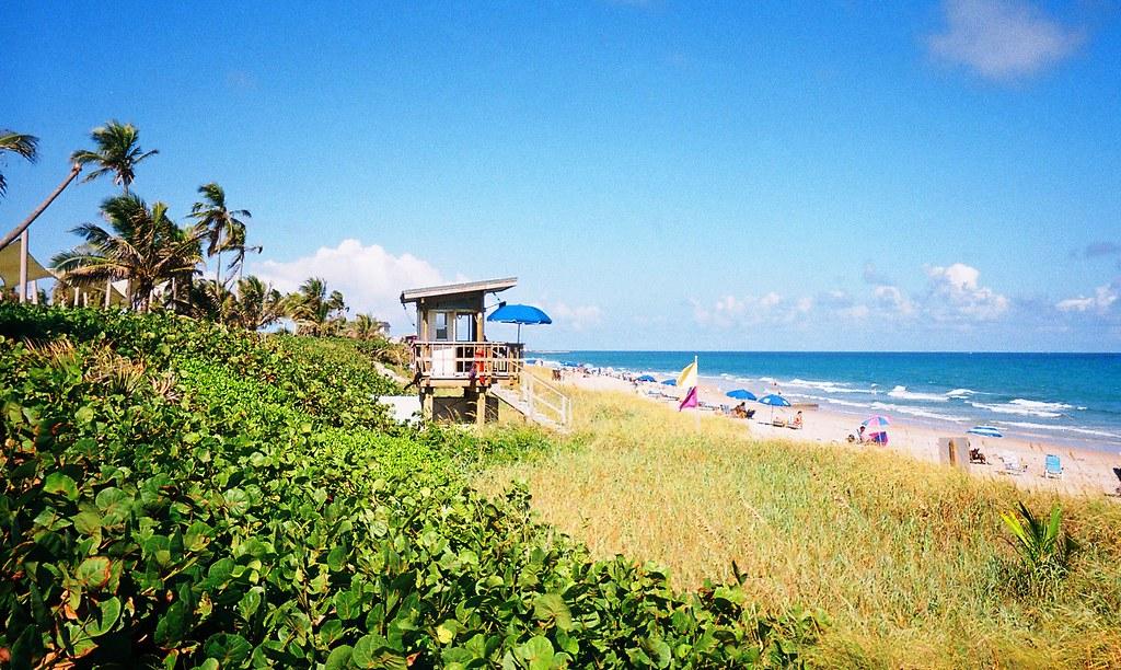 Delightful ... Ocean Ridge Hammock Park, Florida | By Scape Pics