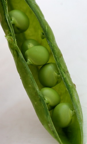 peas in a pod | by Muffet