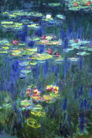 Monets Water Lilies 320