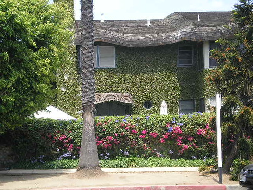 Ivy Covered Cottage In Santa Monica