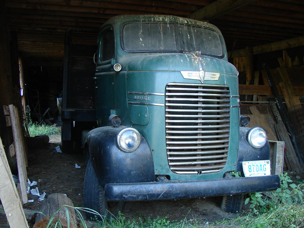 Dodge COE truck | Nice old Dodge COE I spotted while riding ...