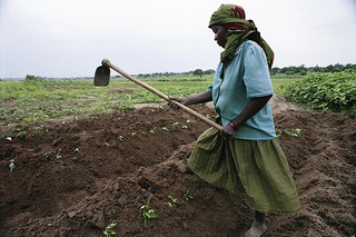 A woman works on her farm | by World Bank Photo Collection
