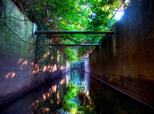 Drainage Canal | by whiterabbit_uo