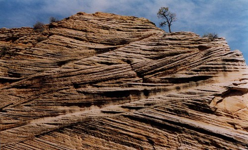 """The Wave"""", a 190 million year old Jurassic-age Navajo sandstone ..."""