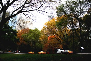 Central Park | by hoemic07