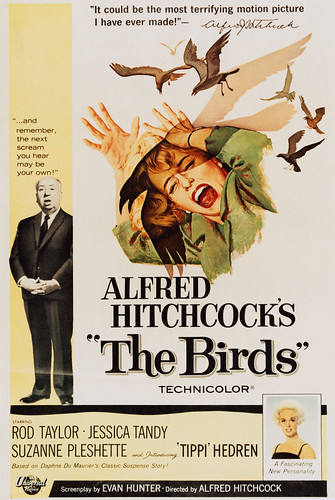 "Alfred Hitchcock's ""The Bird"" 