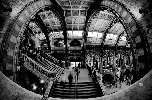 The Natural History Museum - HDR | by Ender079
