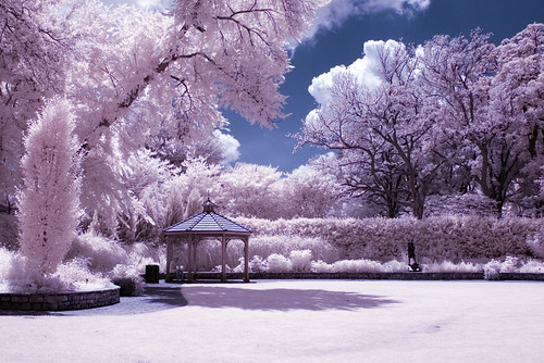 thinking spot (infrared) | by mike.irwin