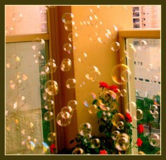 Soap bubbles in the air... | by urimal