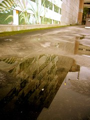 Mirrored Mural | by Gail Peck