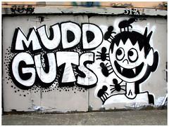 Mud guts