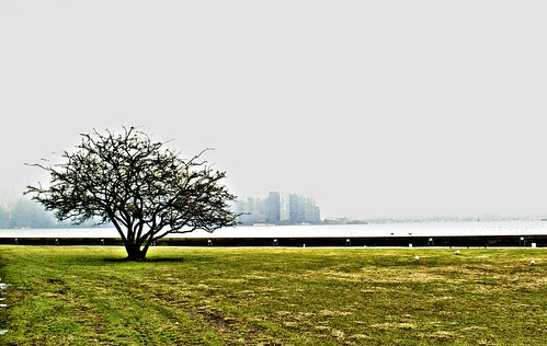 how to get to ellis island from manhattan