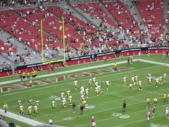 Steelers Cardinals | by Dulamae