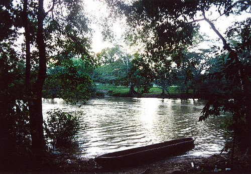 Belize jungle river canoe hanging out in belize by for Jungle furniture white river