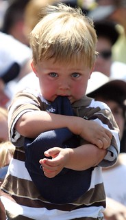 Sad Little Brewer Fan | by gregeichelberger