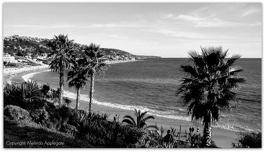 Coastline at laguna beach in california black white by scandblue