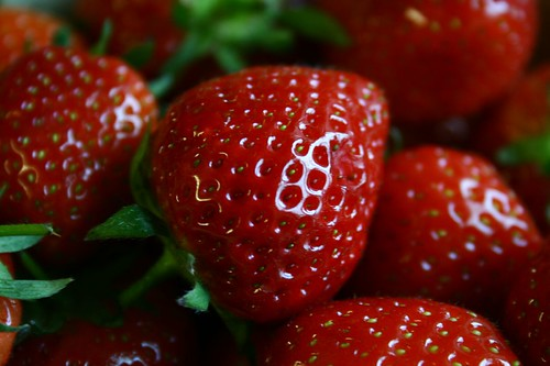 Strawberries | by danny angus