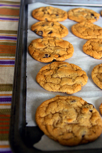 Chocolate Chips Cookies | by Fresh From The Oven 606