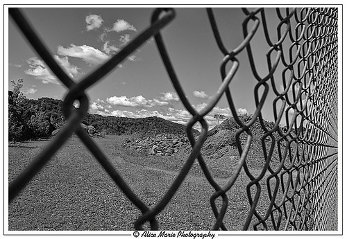A Perspective of the World-Fenced In | by alicemariedesign