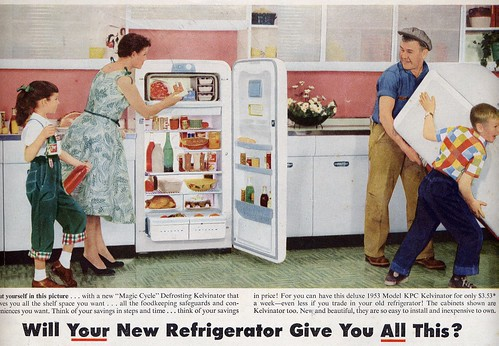new refrigerator | by Millie Motts
