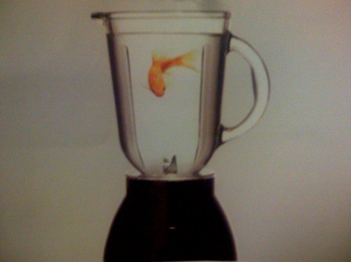 Corporate fish in a blender let me introduce you to a for Fish in a blender
