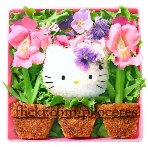 Hello kitty garden bento 9 04 07 organic edible flowers fr flickr - Hello this is my new picture garden interior ...