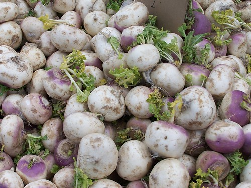 Turnips | by post406