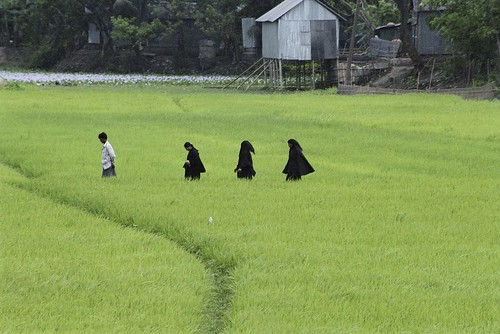 Walking through rice paddies | by World Bank Photo Collection