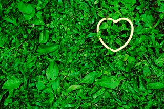 Green Heart (And the Green Grass Grows All Around, All Around) | by CarbonNYC [in SF!]