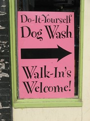 Spotted Dog Grooming Avon Ohio