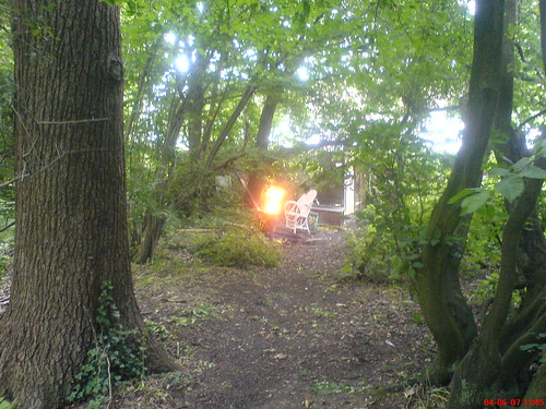 Fire in Oxhey Wood/2 | by luca refatti