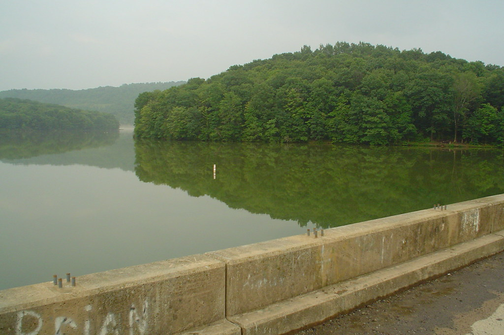 Two lick reservoir