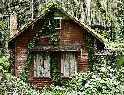 Crescent City Hidden Trails Florida Homes For Sale