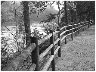 Fence On The Etowah Banks | by Kenny Shackleford