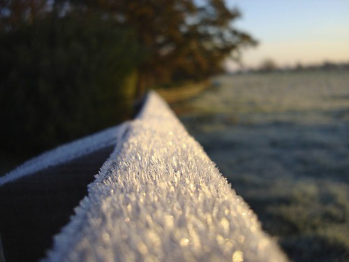 Frosty Fence Rail | by James's GW Blog
