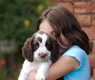 Puppy Love | by smlp.co.uk
