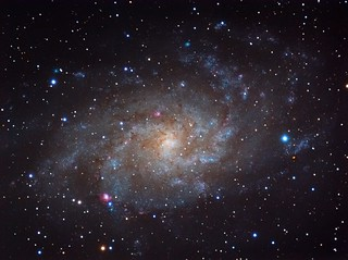 M33 - Triangulum Galaxy | by evansg