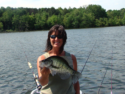 Crappie time crappie fishing on ky lake is a blast this for Crappie fishing in tennessee