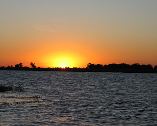 Day 10 Chobe River Botswana3140_214 | by wilddogs
