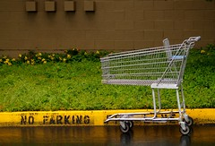 Can you ticket a shopping cart? | by scentzilla