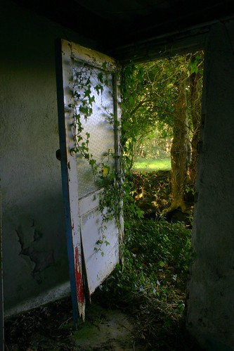 Ivy and Door | by Denis McLaughlin