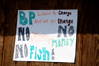 No Shrimp No Money No Fish | by Kris Krug