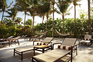 Lounge or Sun Bathe on our Beach Garden | by thepalmshotel