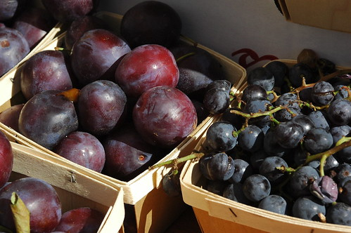 Plums and Grapes, Greenmarket, Cortelyou Road, Flatbush | by Flatbush Gardener