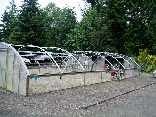 Heronswood Empty Hoophouses | by RHR Horticulture