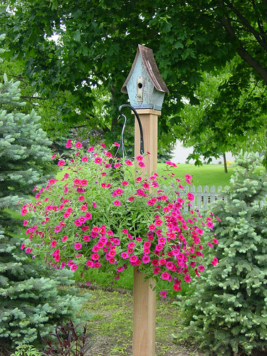 Birdhouse | by Kim Beckmann