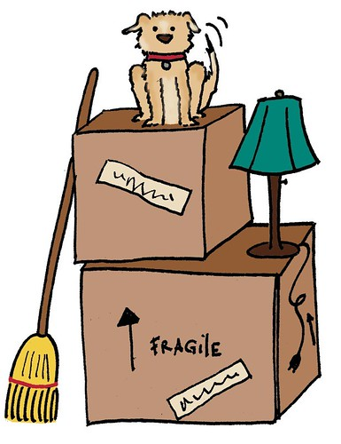 Moving Boxes with Quito | by furbird designs