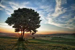 Cissbury ring | by Moving Pictures photo training