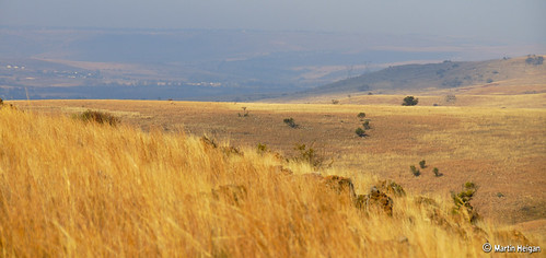 Cradle of Humankind - Winter Colours | by Martin_Heigan